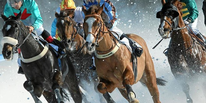 white-turf-horse-racing